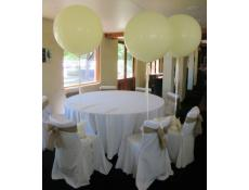 Gaint 90cm Latex Helium Wedding Balloons | Ivory Swan Valley Winery | CorporateRewards.com.au
