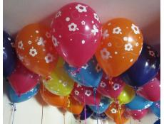 Print Daisy & Butterflies Helium Latex Balloons www.CorporateRewards.com.au