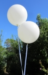 Giant White Balloons 3 Foot