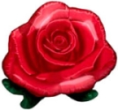 Red Rose Balloon