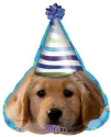 Helium Balloons Perth | Puppy Dog Party Balloons