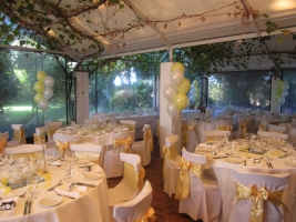 Wedding Balloons Perth | Helium Balloon Arrangements