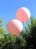 3 Foot Balloons Perth | Pink Giant Balloons